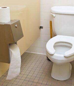 public toilet seat pregnant